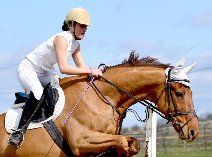 equestrian_padded_underwear